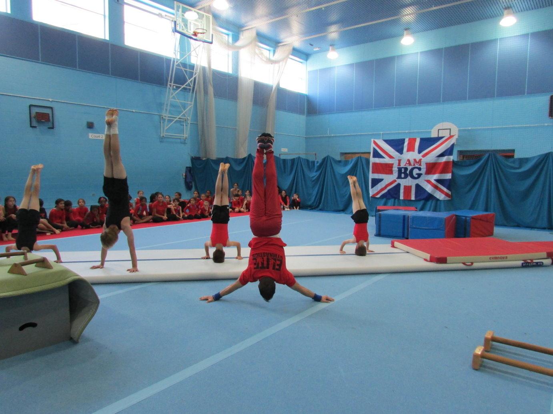 Elite Gymnastics Academy Schedule & Reviews - Classes