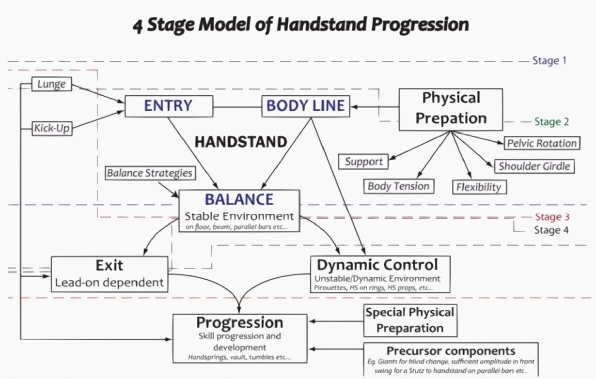 4 Stage Model of Handstand Progression