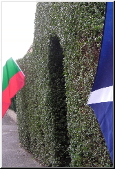 The Bulgarian and Scottish flags