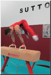 Exercises on Pommel horse