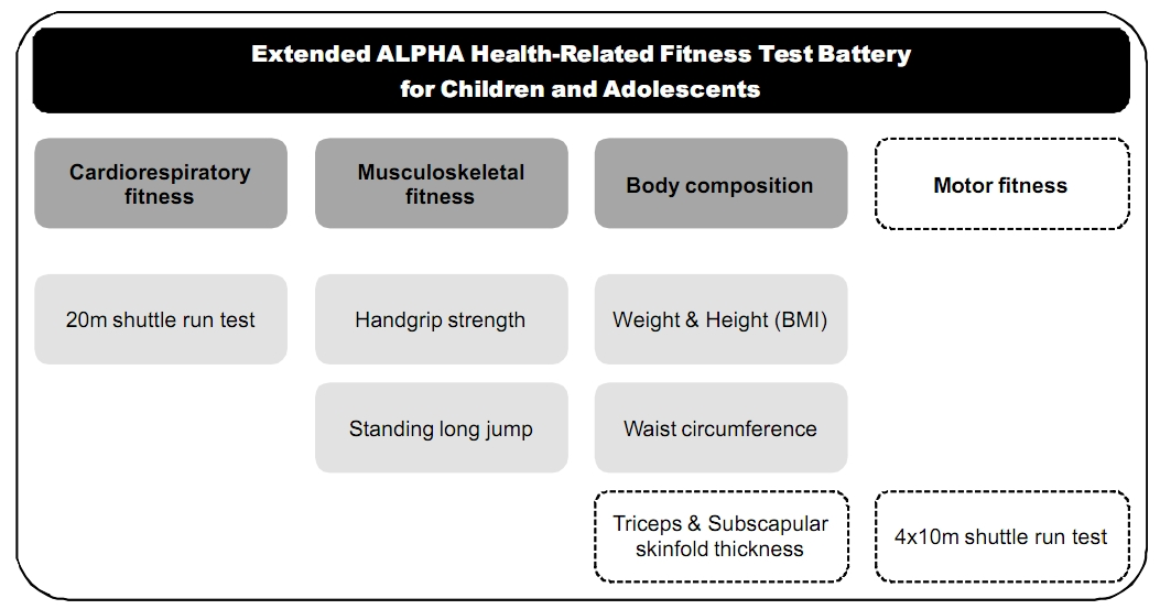 ALPHA-FIT physical fitness test battery